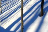 ombres obliques