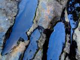 le homard de pierre