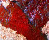 eau sur roche rouge