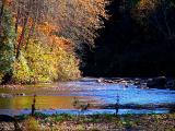 l'automne au bord de la rivière
