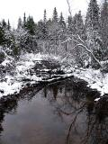 le ruisseau bordé de neige
