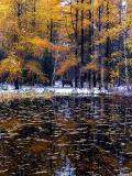 journée de fin d'automne
