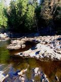 les arbres ,la rivière et les rochers