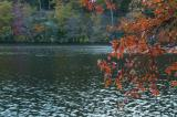 the coral above Hessian Lake in Bear Mountain State Park
