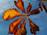 1st November 2005 where is winter?