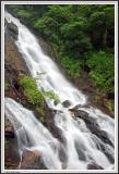 Amicalola Falls - Georgia 2005