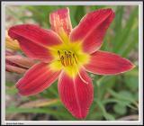 Cypress Gardens - IMG_2154.jpg