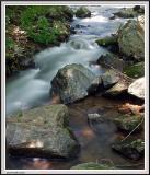 Creek - IMG_3019.jpg