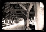 covered bridge, dupont state park, nc