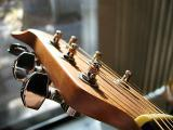 Guitar in the Late Afternoon