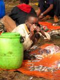 Filletting fish Child Labor