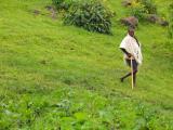 Man near Blue Nile Falls