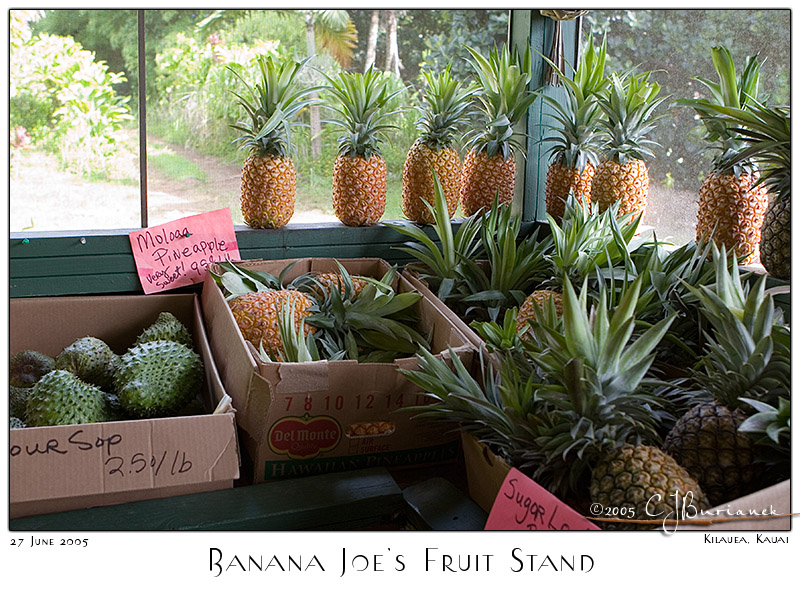 27Jun05 Banana Joes Fruit Stand