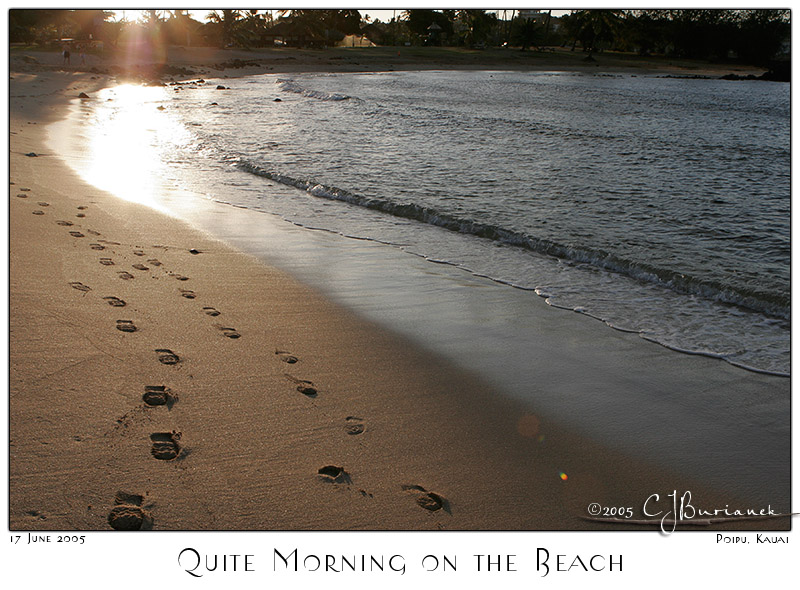 Quite Morning on the Beach - 703