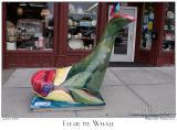Fleur de Whale - 3233