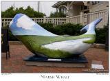 Marsh Whale - 3148