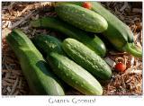 22July05 Garden Goodies - 4230