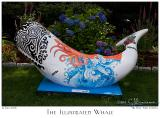 The Illustrated Whale - 3320