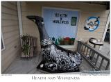 Health and Whaleness - 3406