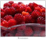 29July05 Wineberries - 4387