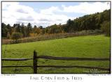 17Oct05 Fall Corn Field  Trees - 6409