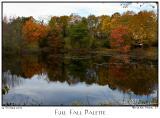 24Oct05 Full Fall Palette - 6875