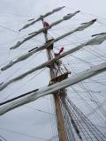 Pallada Sails 1