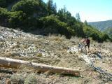 Avalanche Debris - Manzanita Trail
