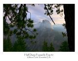 Half Dome Framed In Pine 2.jpg