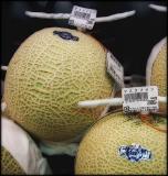 Thirty dollar melons
