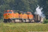 BNSF 5663 NS 739 Oakland City IN