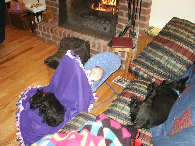 Asleep with dogs.JPG