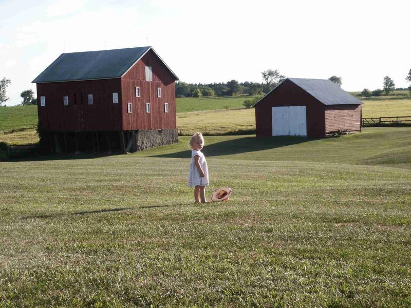 Lilli dropped hat at barns.jpg