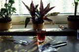 Café table Skagen