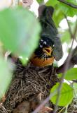 Not Such A Good Place
