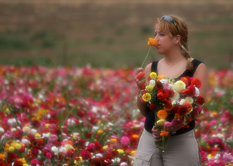 Flowers for sale.jpg