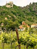 Austria: Vineyard and Castle Ruin