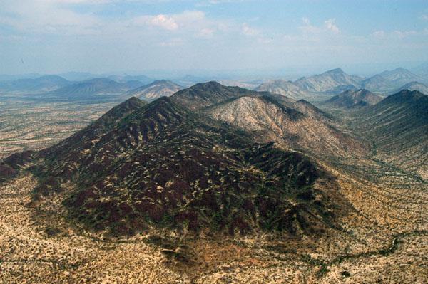 Zebra Mountain