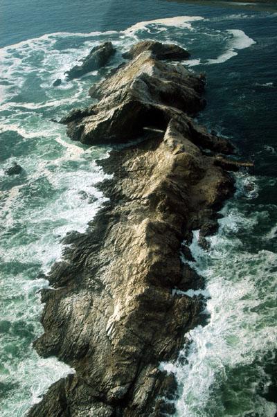 Mercurcy Island, one of Namibias penguin islands
