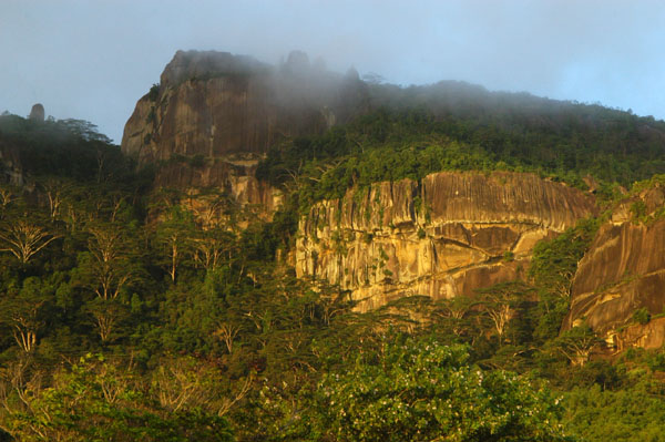 Cliffs rising above the airport on Mahé Island, Seychelles