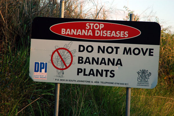 Banana Quarantine sign