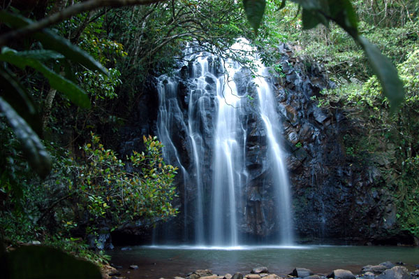 Ellinja Falls, Atherton Tableland