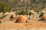 Himba village near the airstrip