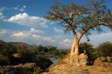Baobabs give Epupa Falls a fairyland appearance