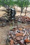 Himba cemetary