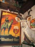 Windhoek brews excellent beer