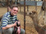 Jan Rodenbeck, Al Ain Camel Market