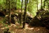 Sihlsprung- wildest part of the Sihl valley