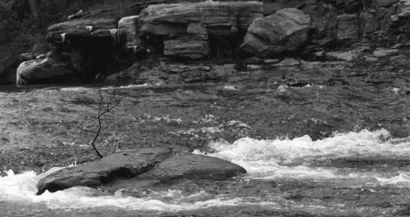 little river-lmc.jpg