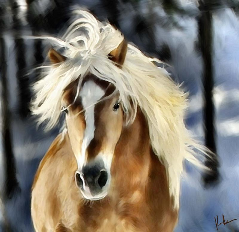 run horse.jpg